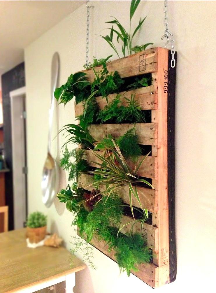 10 DIY Indoor Herb Garden Ideas and Planters [They're Easy